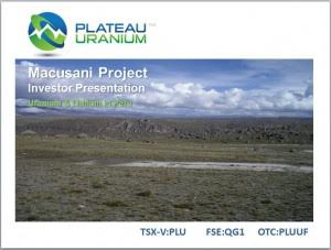 Plateau Energy con rms lithium potential at project Falchani