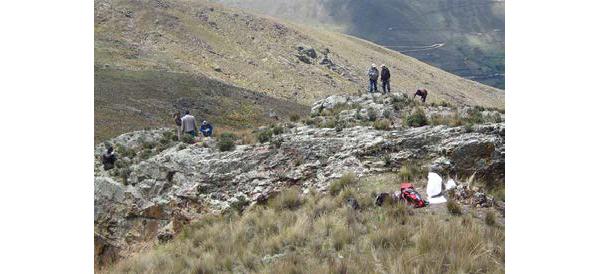 Chakana Copper suspende actividades en proyecto Soledad