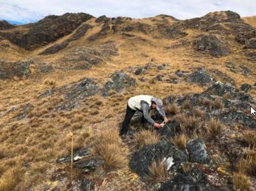 Palamina iniciará primera campaña de perforación en cinturón orogénico de Puno